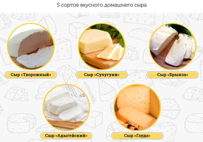 Виды домашних сыров из сыроварни