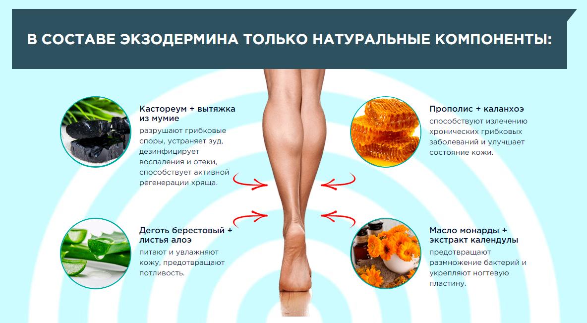 Состав Экзодермина