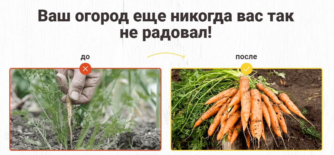 Результаты до и после использования AgroUP