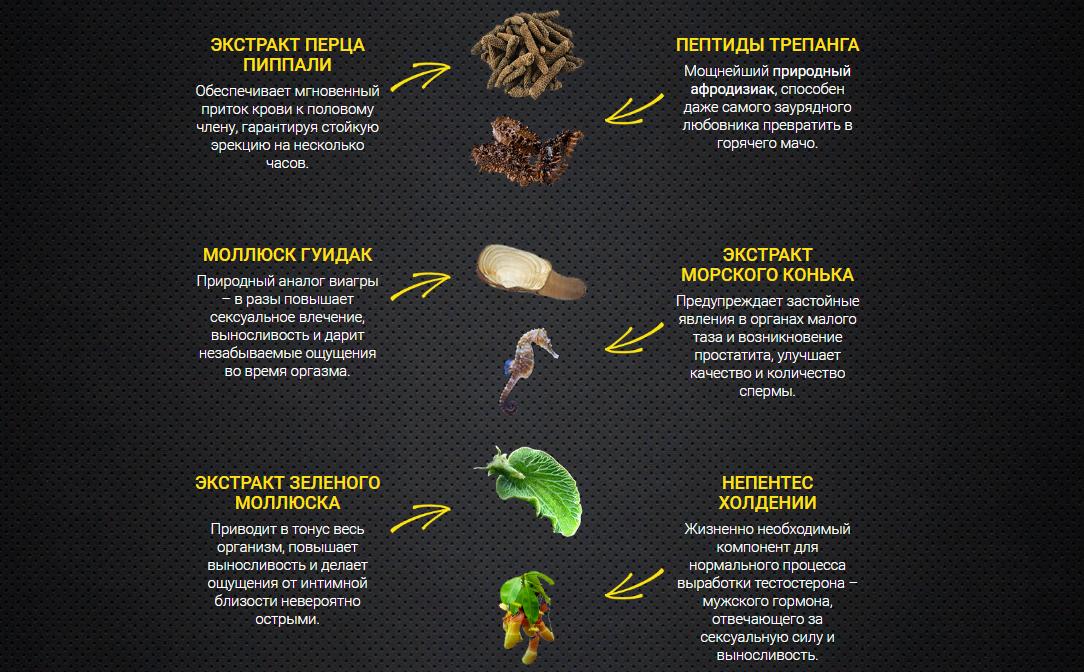 Состав препарата Эрокапс