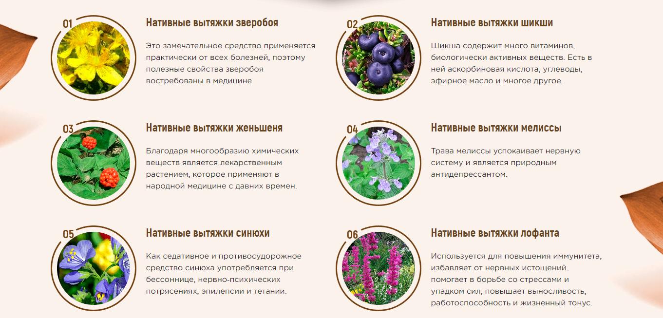 Состав препарата Колмолайф